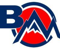 Back Mountain Little League