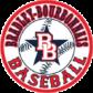 Bradley-Bourbonnais Baseball